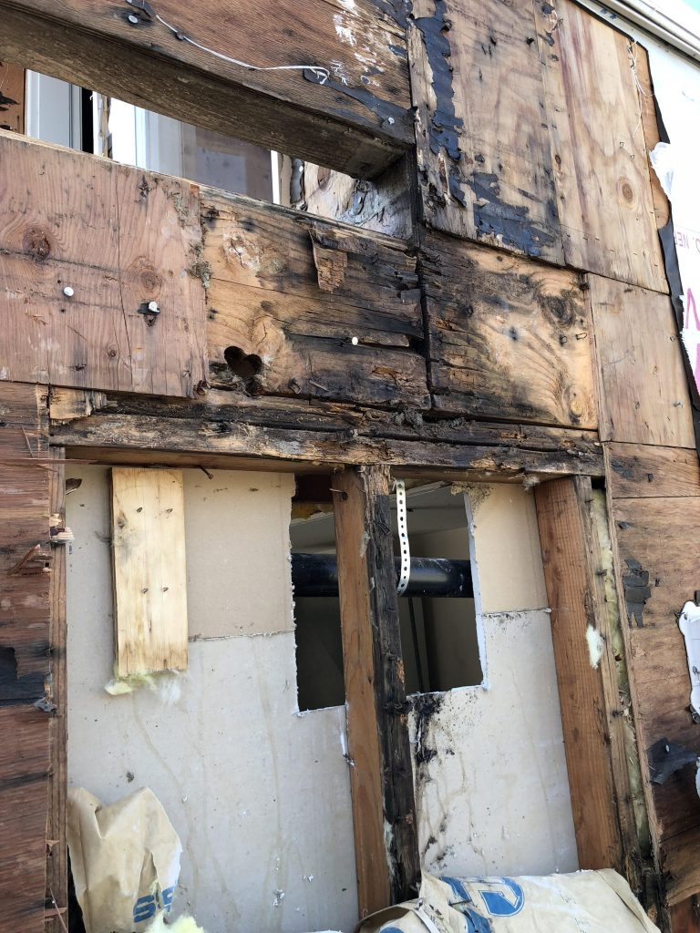 exterior dry rot